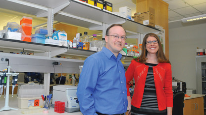 Engineering, UNMC faculty partner to further biomedical research