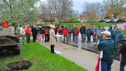 Arbor Day Foundation honors UNL