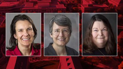 Clarke, Hermiller, Hope are finalists to lead Graduate Studies