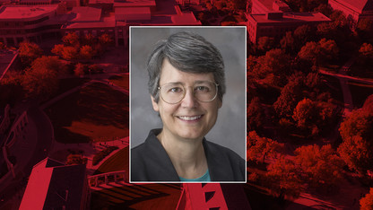 Hermiller named AMS fellow