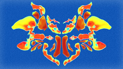 Gray matter? Study finds differing interpretations of brain maps