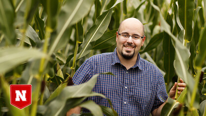 All the angles: Automated image processing could aid crop evals