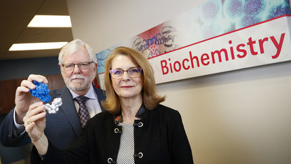 Researchers pinpoint tumor-related protein, slow progression of cancers