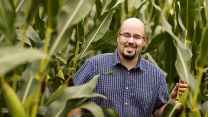 Stalk-worn sensor to measure crops' water use