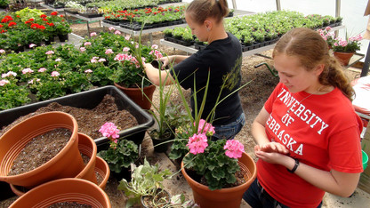 That time of year: Horticulture Club's spring sale