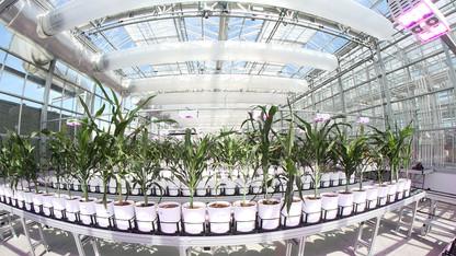 Registration open for Nebraska Plant Science Symposium