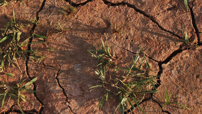 Research points to humans' role in drought