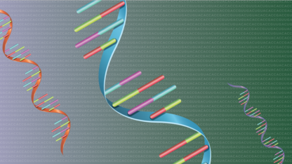 Nebraska tool boosts gene analysis
