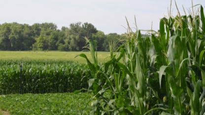 Eastern Nebraska Research and Extension Center hosts open house June 29