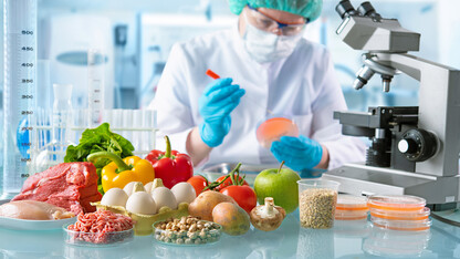 Summit to bring together food for health experts