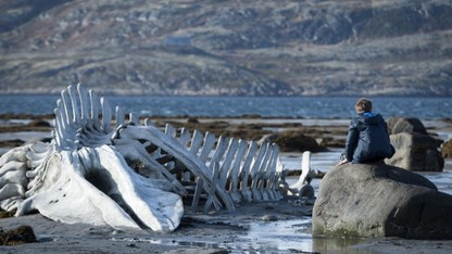 'Leviathan' to open new campus film festival