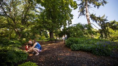 Maxwell Arboretum fall festival is Oct. 24