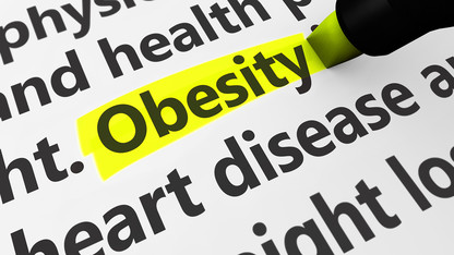 Proposals sought for research into nutrient signaling, obesity