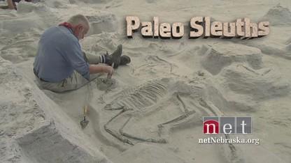 'Paleo Sleuths' premieres Nov. 16  on NET