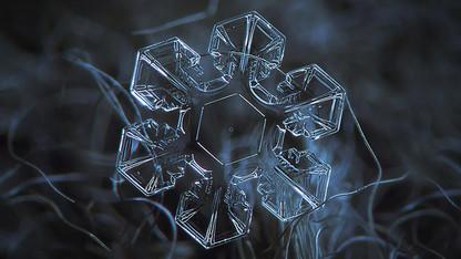 Winter Wellness events include flu shot clinics