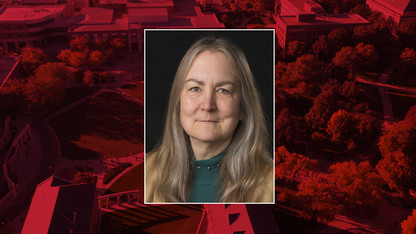 Sollars is new director of undergrad education programs
