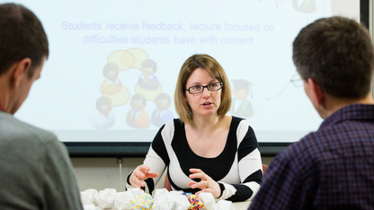 NSF award aids Stains' research on STEM teaching