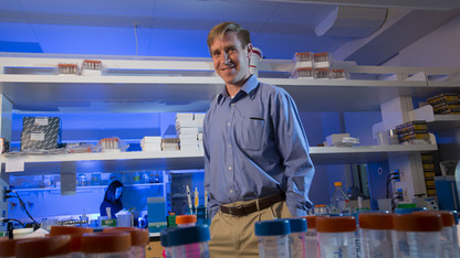 Smallpox vaccine virus helps scientist understand immunity