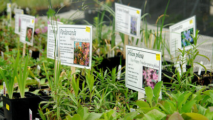 Spring Affair plant sale is April 29-May 7