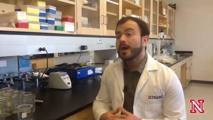 Streaming Science: Food Allergens In Grains