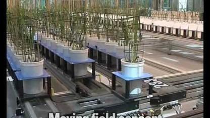 LemnaTec 3D Plant Phenomics system