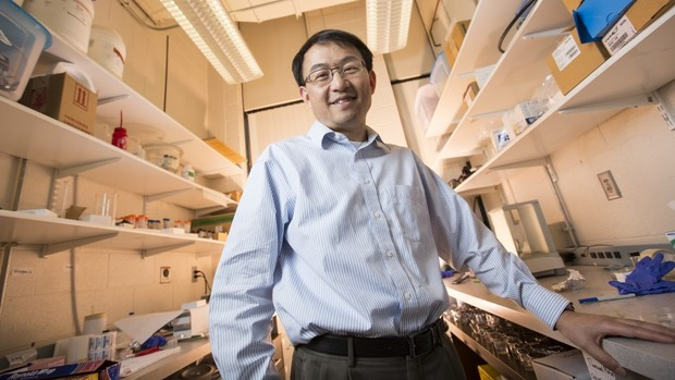 The design could bolster SONAR applications ranging from communication to navigation to defense, said co-author Li Tan, associate professor of mechanical and materials engineering at Nebraska.