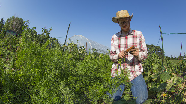 Nash Leef examines a carrot grown on Bugeater Farms. The student-led organic farm was formed in 2012. Leef assumed management of the space in fall 2016.