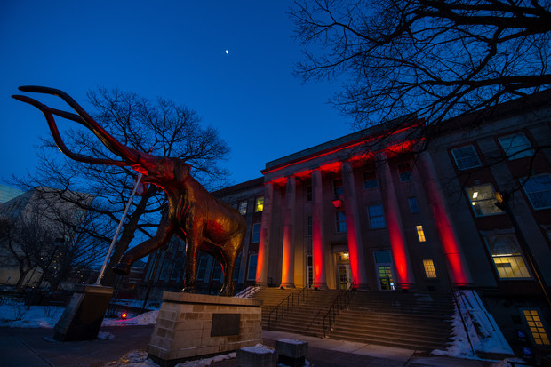 Archie the Mammoth and Morrill Hall shine as part of Glow Big Red.