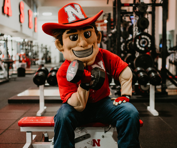 Herbie Husker lifts weights after a morning cheer practice in Memorial Stadium. The mascot's never-say-die work ethic is a reflection of the spirit of all Nebraskans.
