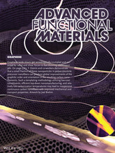 Page from the Dec. 10 issue of Advanced Functional Materials