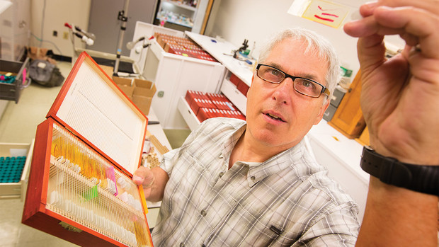 "University of Nebraska State Museum curator and parasitologist Scott Gardner holds a specimen slide in the museum's Harold W. Manter Laboratory of Parasitology. Scientific research from the lab and research specimens are featured in the new exhibition ""Guts and Glory: A Parasite Story"" at Morrill Hall."