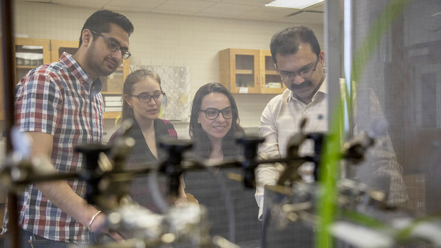 Graduate students (from left) Sajjan Grover, Mariana Sanchez and Karen Da Silva look at computer readings with Nebraska entomologist Joe Louis.