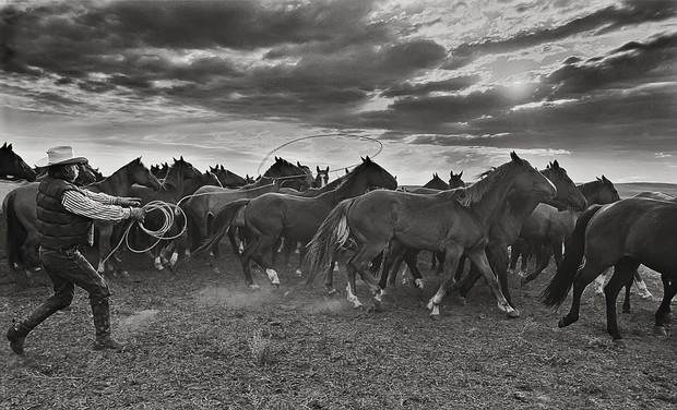 """""""Morning Mounts '02"""" by Charles W. Guildner, 2002"""