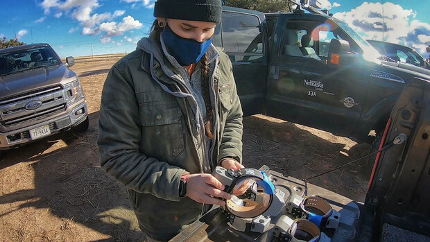 School of Natural Resources graduate student Katie Piecora readies a GPS radio collar. Piecora will analyze information transmitted by the collars to track the movements of 80 pronghorn across the Nebraska Panhandle, where most of the state's estimated 8,000 pronghorn can be found.
