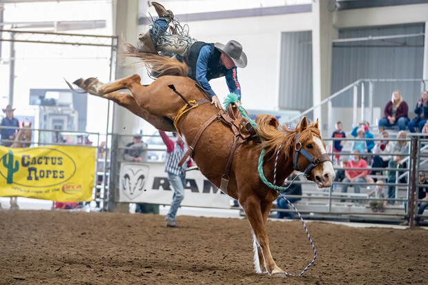 Sam Florell, a sophomore agricultural economics major, catches some air after being bucked off in the saddle bronc riding competition.