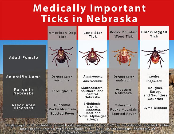 Ticks in Nebraska