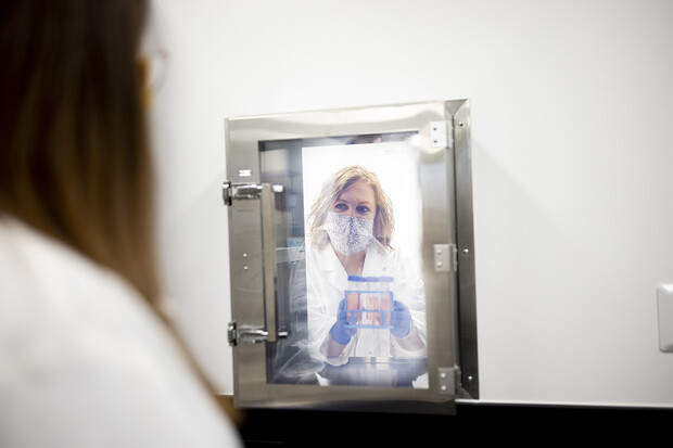 researchers passing bacterial cultures from the laboratory to the procedure room