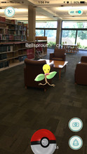 Pokémon Go screenshot of a player trying to capture a Bellsprout in the Law Library.