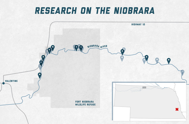Vondracek's team visited 17 different collection sites across the Niobrara River. The sites, marked above by the points along the river, are all east of Valentine in north-central Nebraska and include the Fort Niobrara Wildlife Refuge.