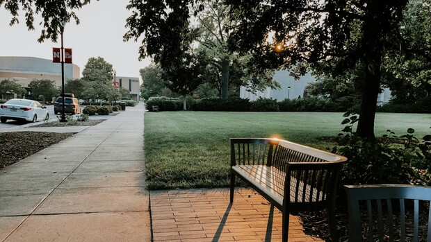 Scenery on campus