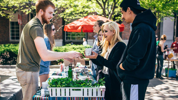Students learn about sustainability during the university's 2016 Earth Day celebration in April.
