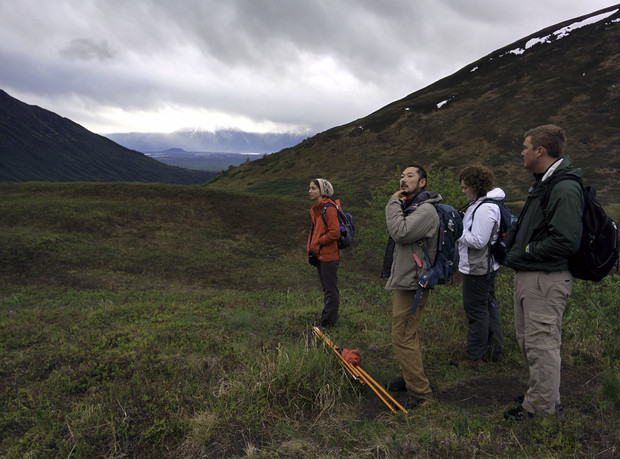 University of Nebraska-Lincoln biologists Emily Hudson (left), Daizaburo Shizuka (second from left) and their colleagues tracked golden-crowned sparrows to their nests in southern Alaska as part of a study into how sparrow chicks recognize their species' songs. The study found that week-old chicks, despite not yet learning their mating song, can distinguish that song from another sparrow species' based on its first note alone.