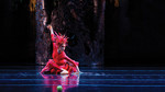 American Ballet Theatre, St. Louis Symphony to present 'Firebird' at Lied